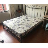 giường sắt mỹ thuật